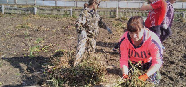 Отчет по акции «Чистый двор школы»