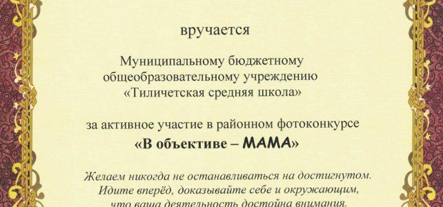 В объективе — МАМА